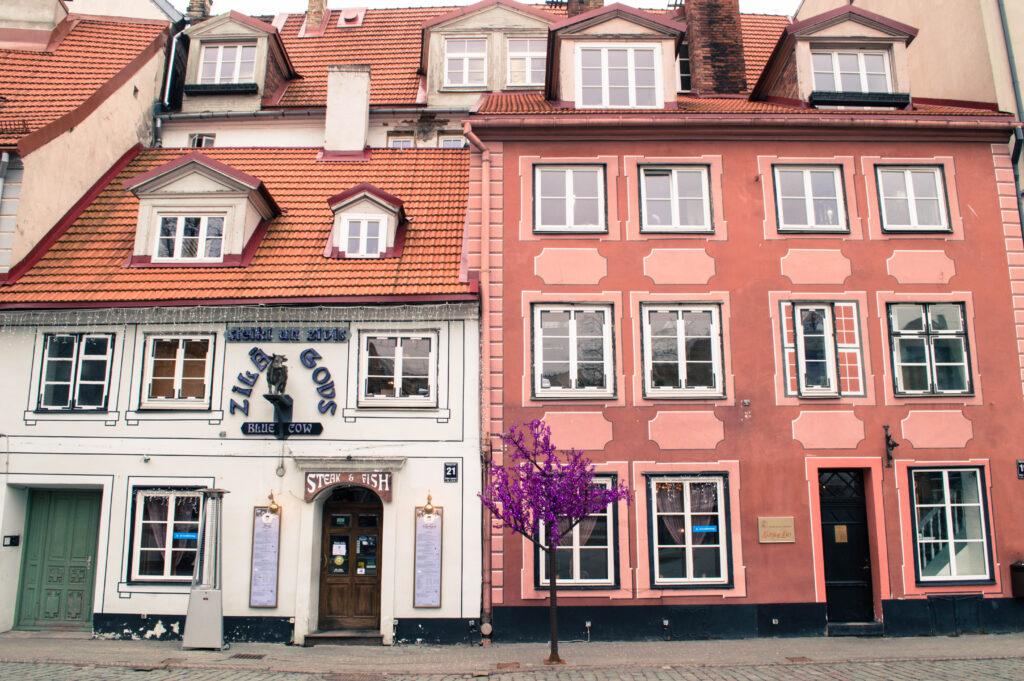 Happy to Wander Riga-0047