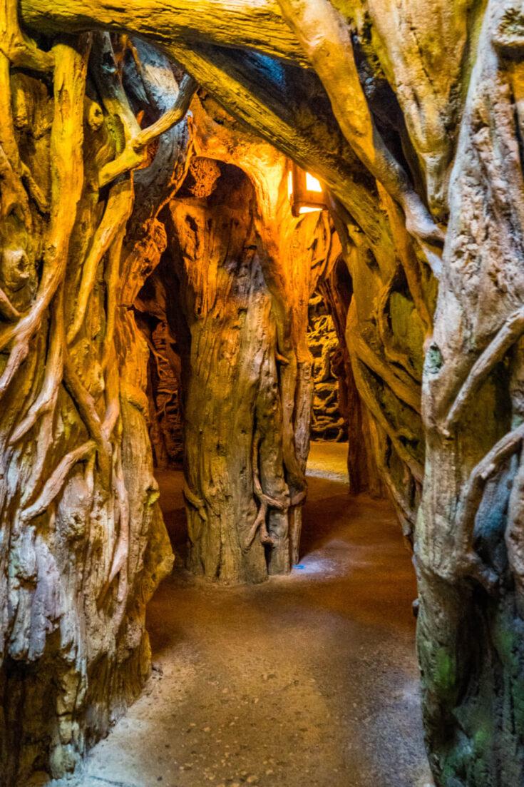 Exploring under the Swiss Family Treehouse at Disneyland Paris