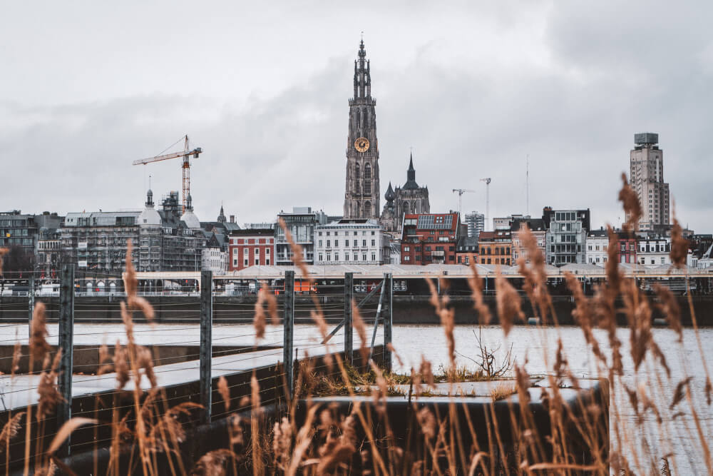 View of the Antwerp skyline from across the water