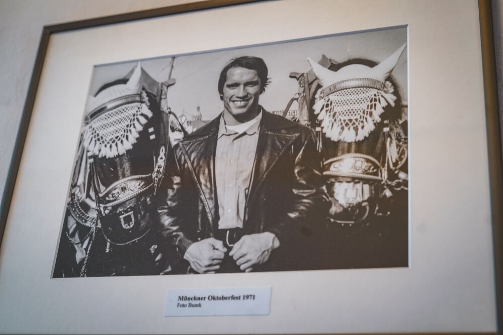 Arnold Schwarzenegger Oktoberfest photo at the Arnold Schwarzenegger Museum in Thal, Austria