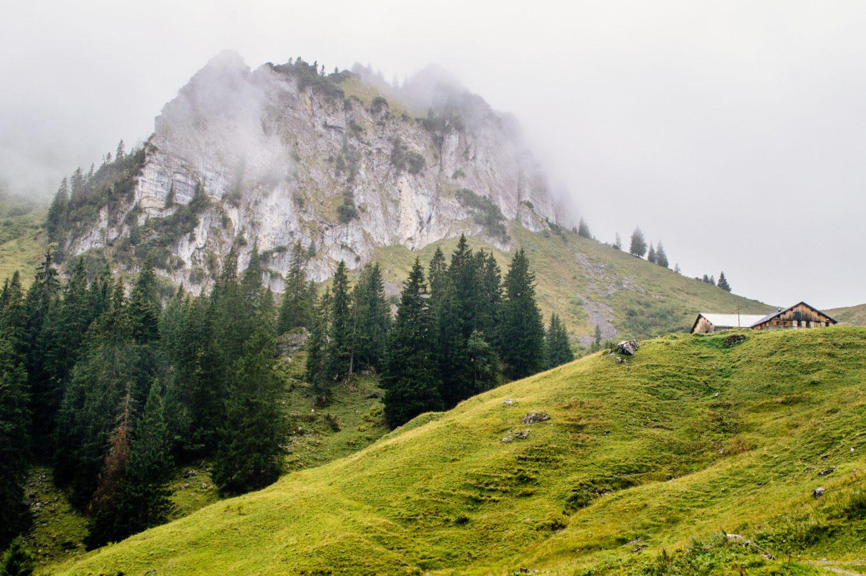 Wow! Who knew the Bregenzerwald in Austria's Vorarlberg was so gorgeous? Discover this amazing hidden gem in Austria through a series of beautiful photos. #Austria