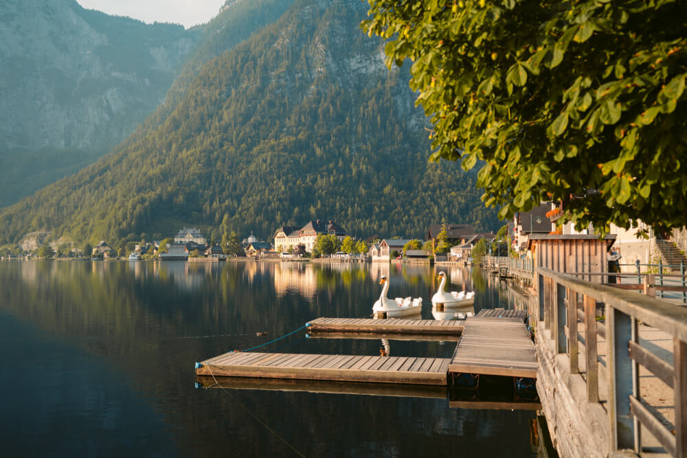 Swan boats along the lake in Hallstatt, Austria.
