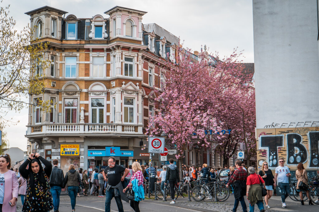 Crowds in front of a street filled with cherry blossom trees in Bonn, Germany