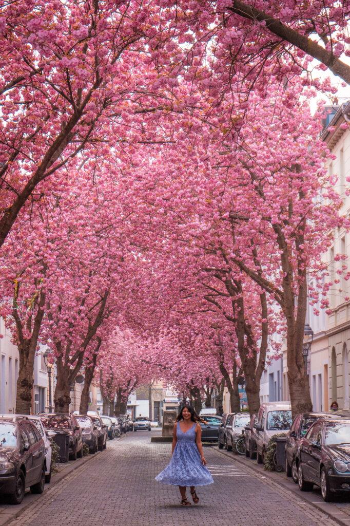 Girl twirling in purple dress by cherry blossom trees on Heerstrasse in Bonn, Germany