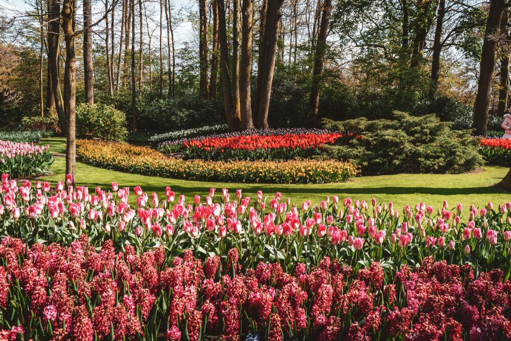 A Stress-Free Guide to Enjoying Keukenhof Gardens, Holland's #1 Flower Garden