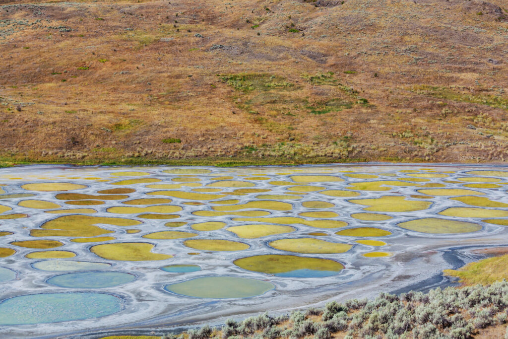 Polka dotted lake with blue and yellow spots in Osoyoos, BC, Canada