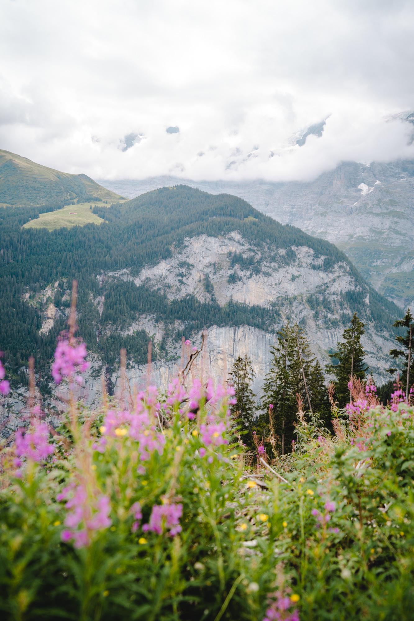 Hiking views over Lauterbrunnen Valley in Switzerland.