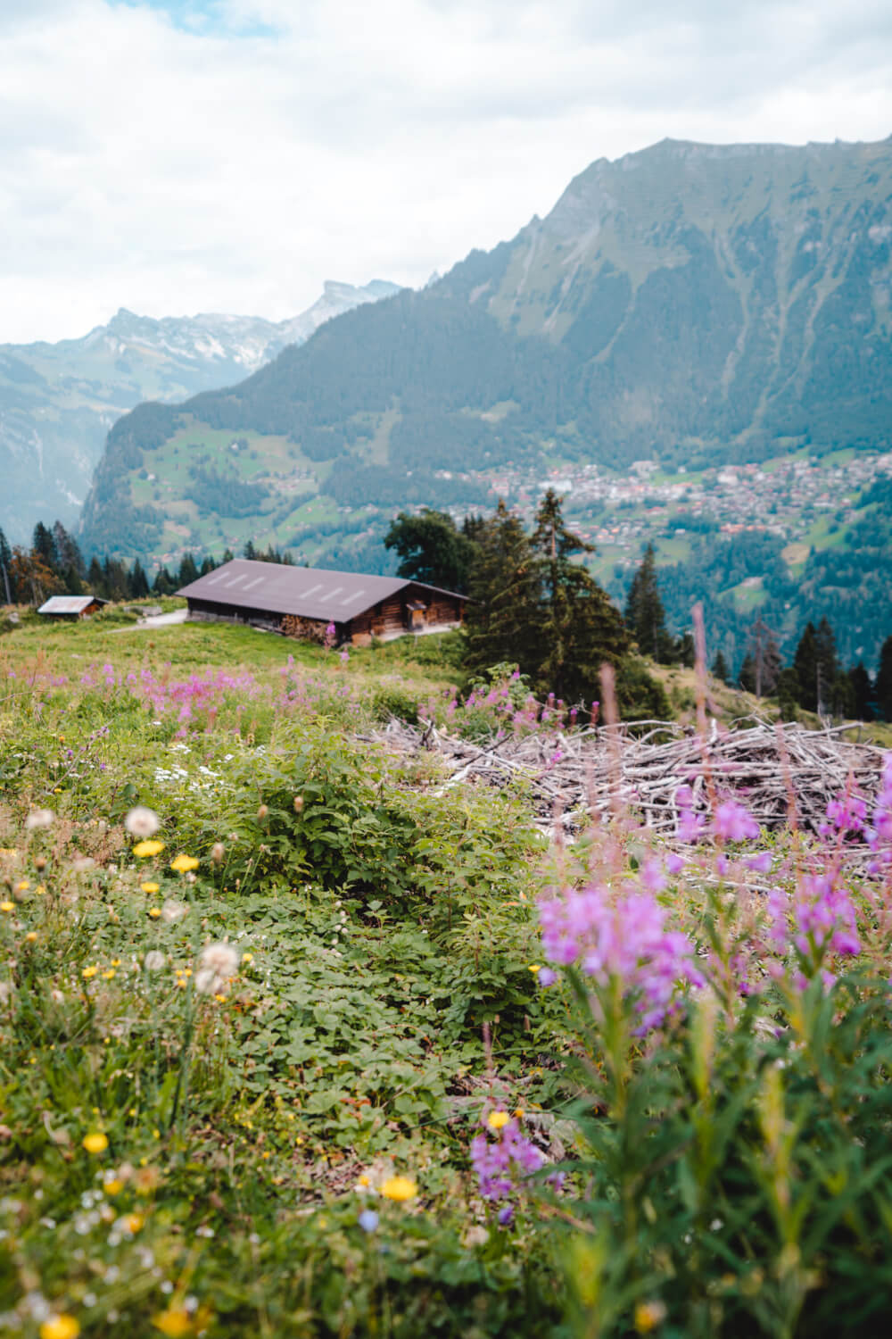 A view over Lauterbrunnen Valley hiking to Mürren.