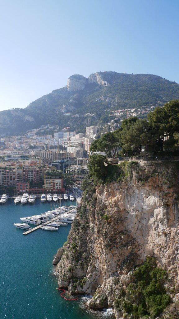 View of green park on a rock in Monaco