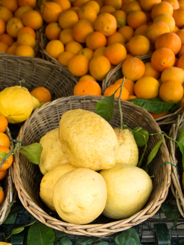 Large Sorrento lemons