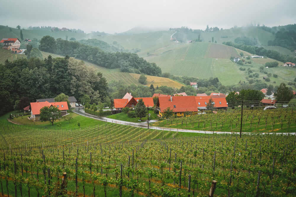 South Styria wine route view