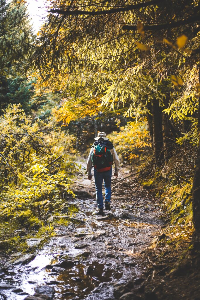 Backpacker hiking through the Vosges mountains in France