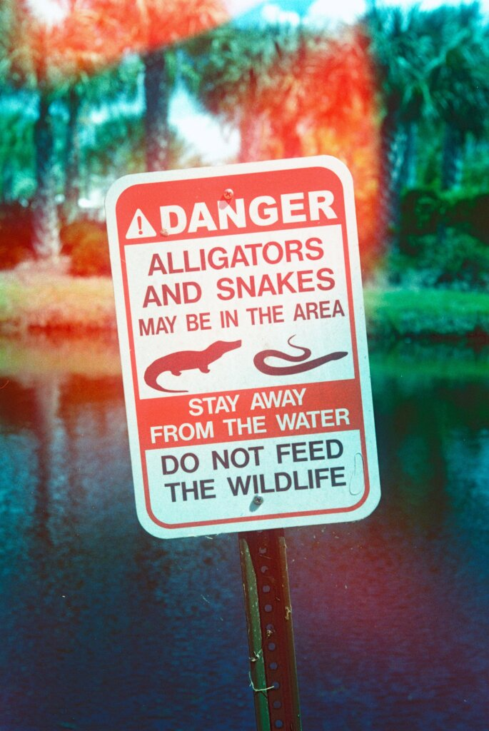 A sign warning people about dangerous wildlife, specifically alligators and snakes.