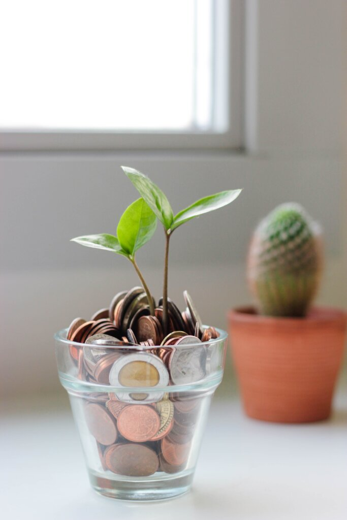 Cup of coins with plants growing out of it by a window