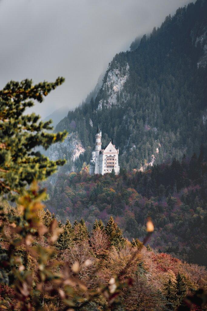 View of Neuschwanstein Castle on a hill in Bavaria