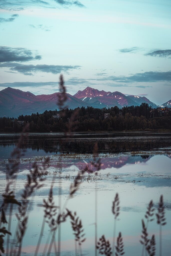 A beautiful view on a crisp morning through weeds at one of Alaska's 3,000,000 lakes with a mountain range in the background.
