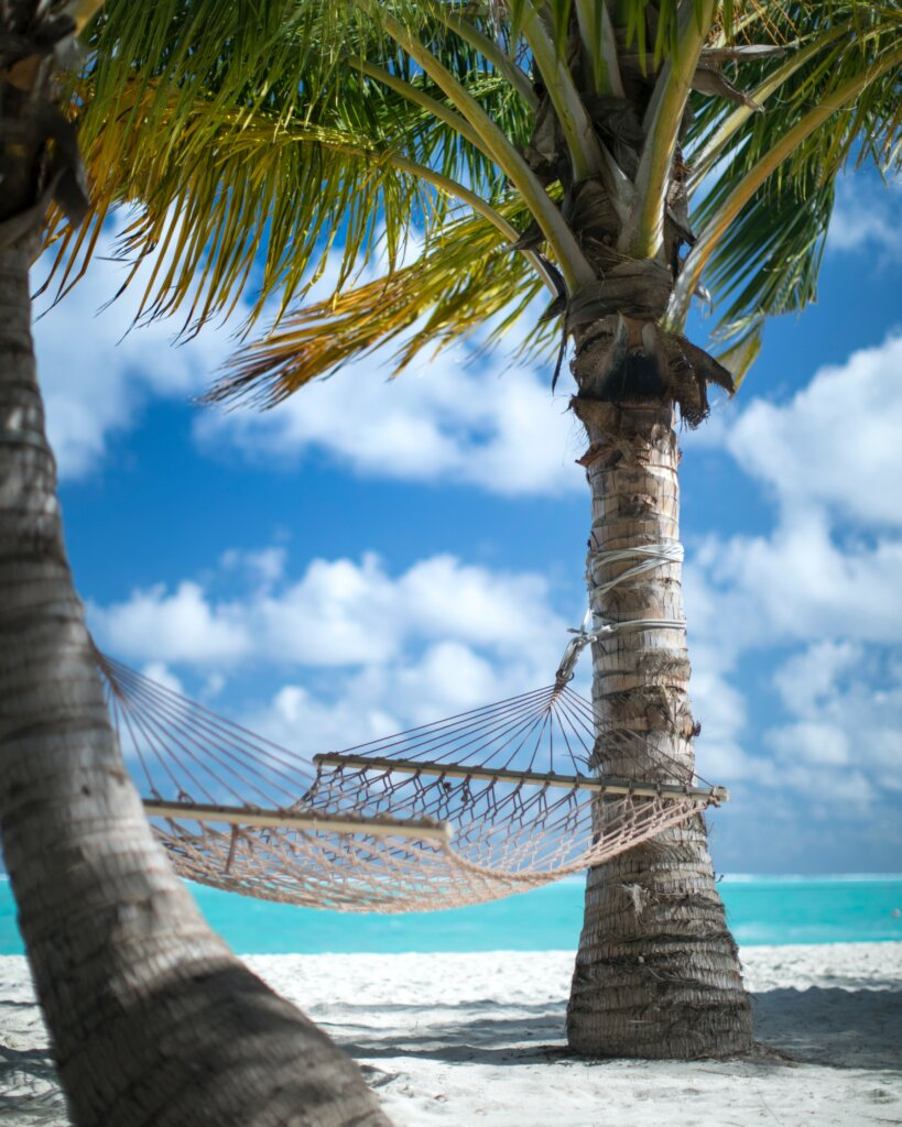 Hammock on a beach with clear blue water surrounded by palm trees